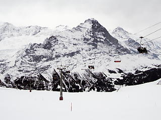 First�@Grindelwald